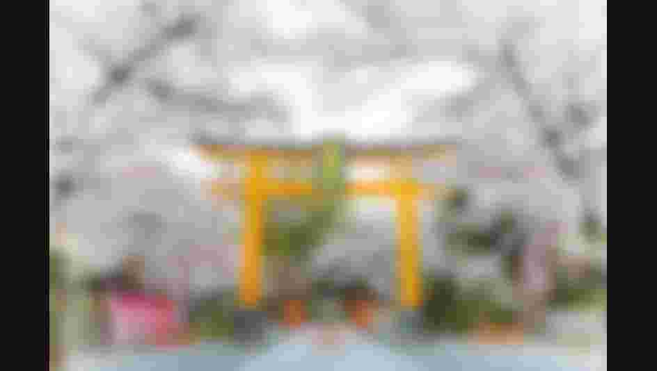 20200404_hirano_shrine_06_py75gt